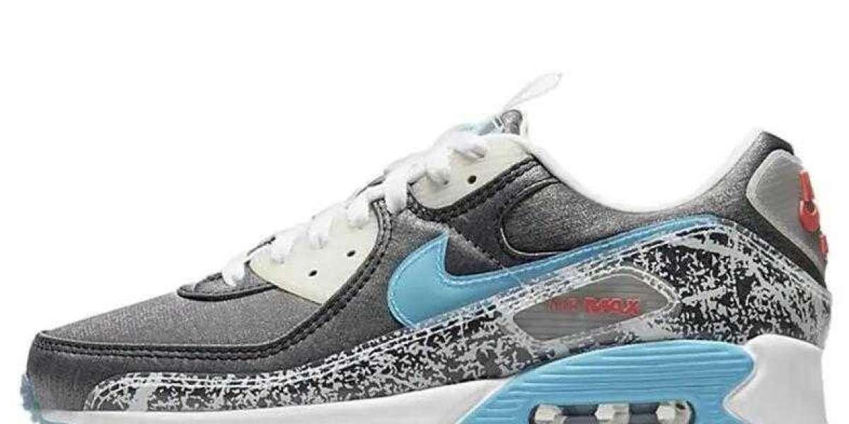 Where to Buy DD5483-010 Nike Air Max 90 Rice Ball ?